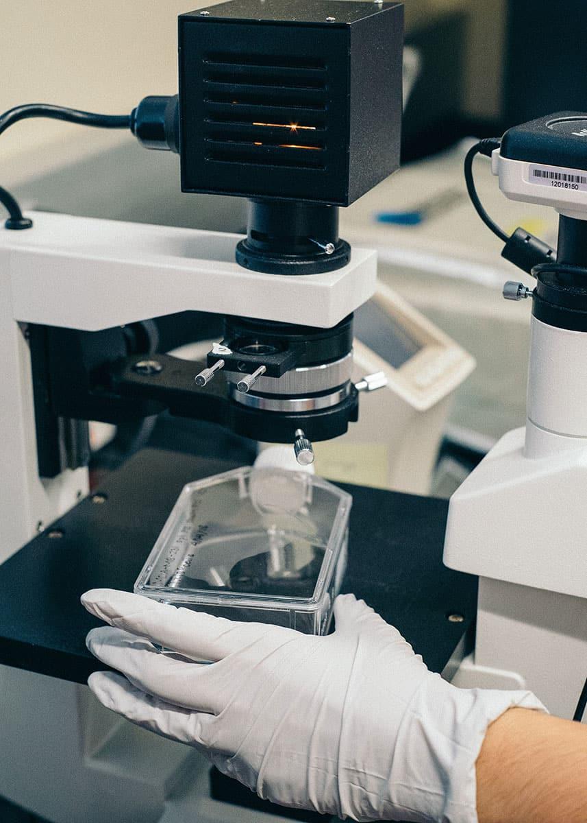 Danaher Mitarbeiter am Mikroskop