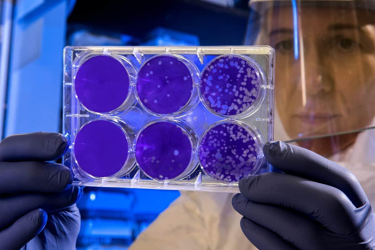 Laborausrüstung von Thermo Fisher Scientific