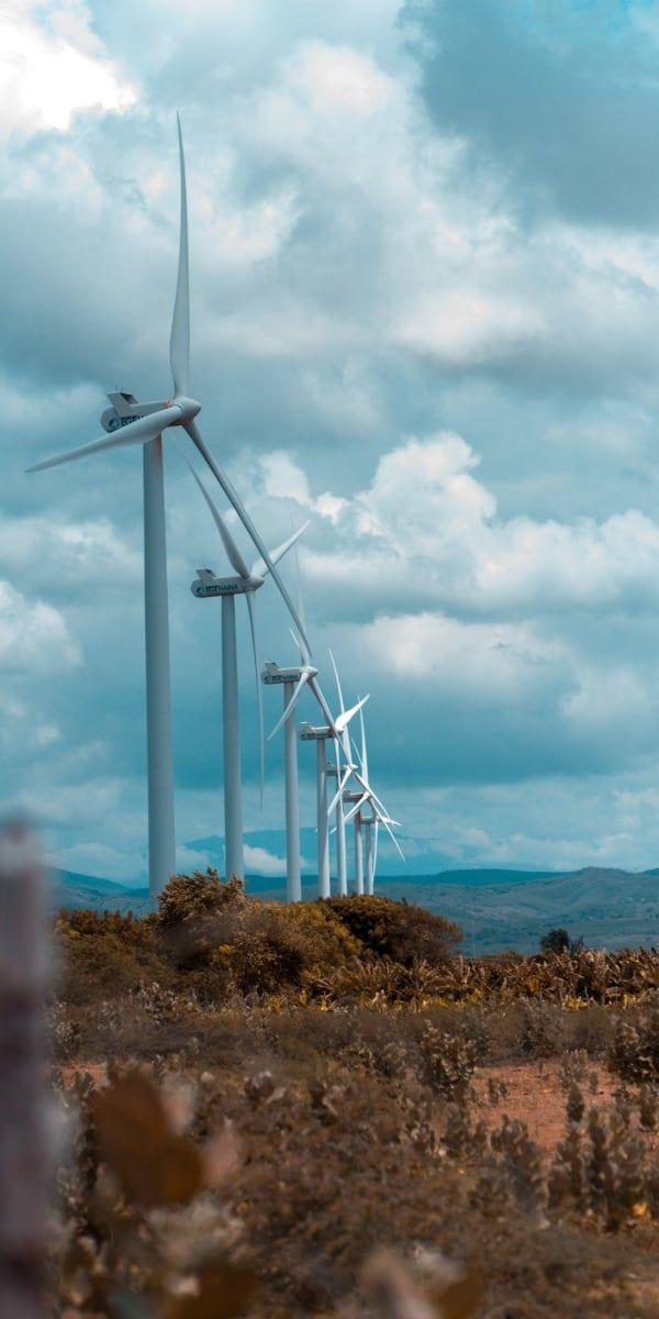 Windpark von NextEra Energy